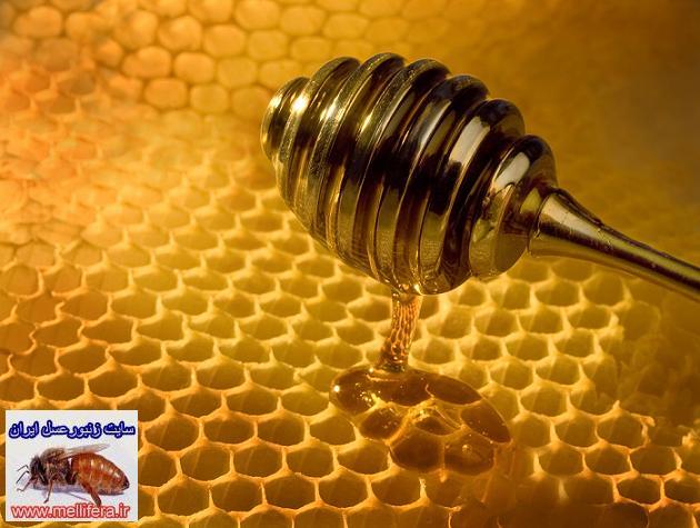 خواص و مواد موجود در عسل