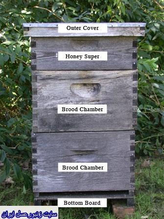 كندوي زنبورعسل