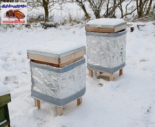استقرار کندوها در زمستان